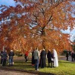 Beech Tree Plaque - Nov 2019